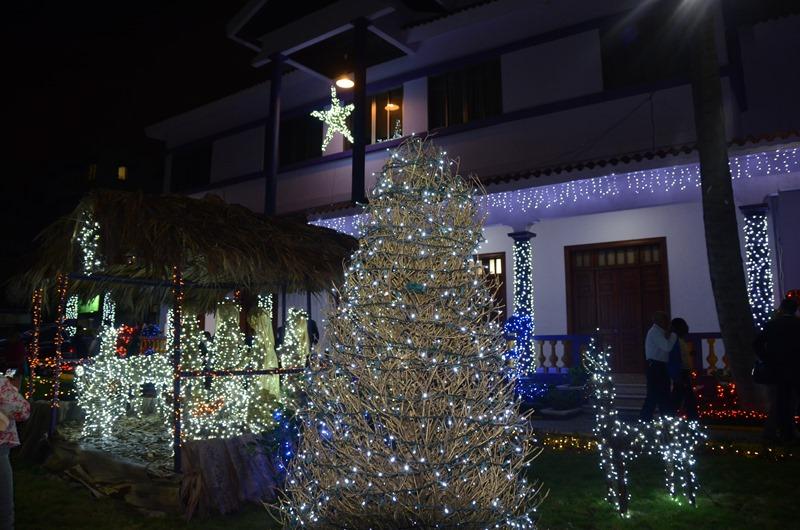 Llega la navidad al PLD3